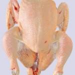 poulet entier congolés, Poulet entier