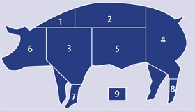 Wholesale frozen Pork meat cuts knh