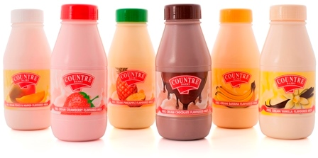 Wholesale dairy flavoured cream milk